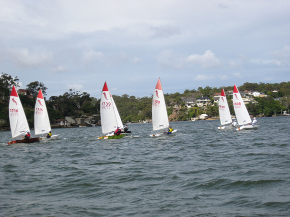 Sabre NSW Regatta